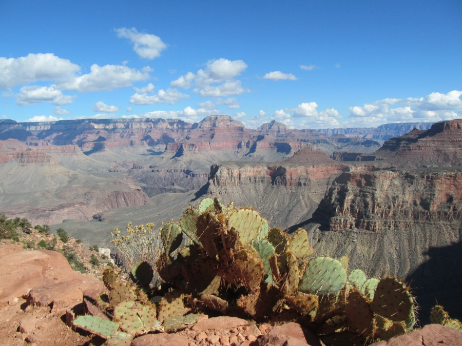 2015_10_01_Oct23_GrandCanyon_007